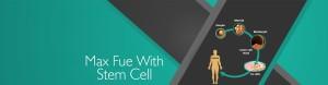 Stem cell_Banner_kr