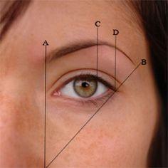 eyebrow_measure_kr