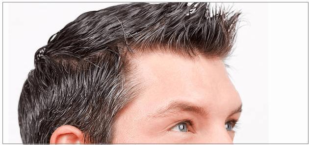 hairline4_kr